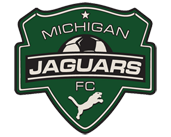 Michigan Jaguars image