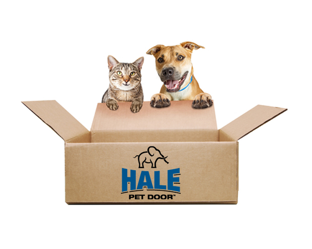 Cat and Dog with Hale Shipping Box