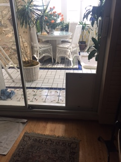 Hale In Glass Pet Door leading to a sun room