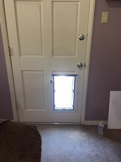 Hale Pet Door dog door installed in a people door