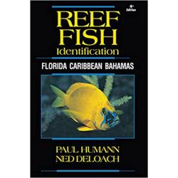 REEF FISH ID 4TH EDITION