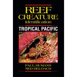 REEF CREATURES ID TROPICAL PACIFIC
