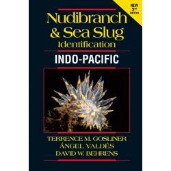 NUDIBRANCH & SEA SLUG/INDO PACIFIC