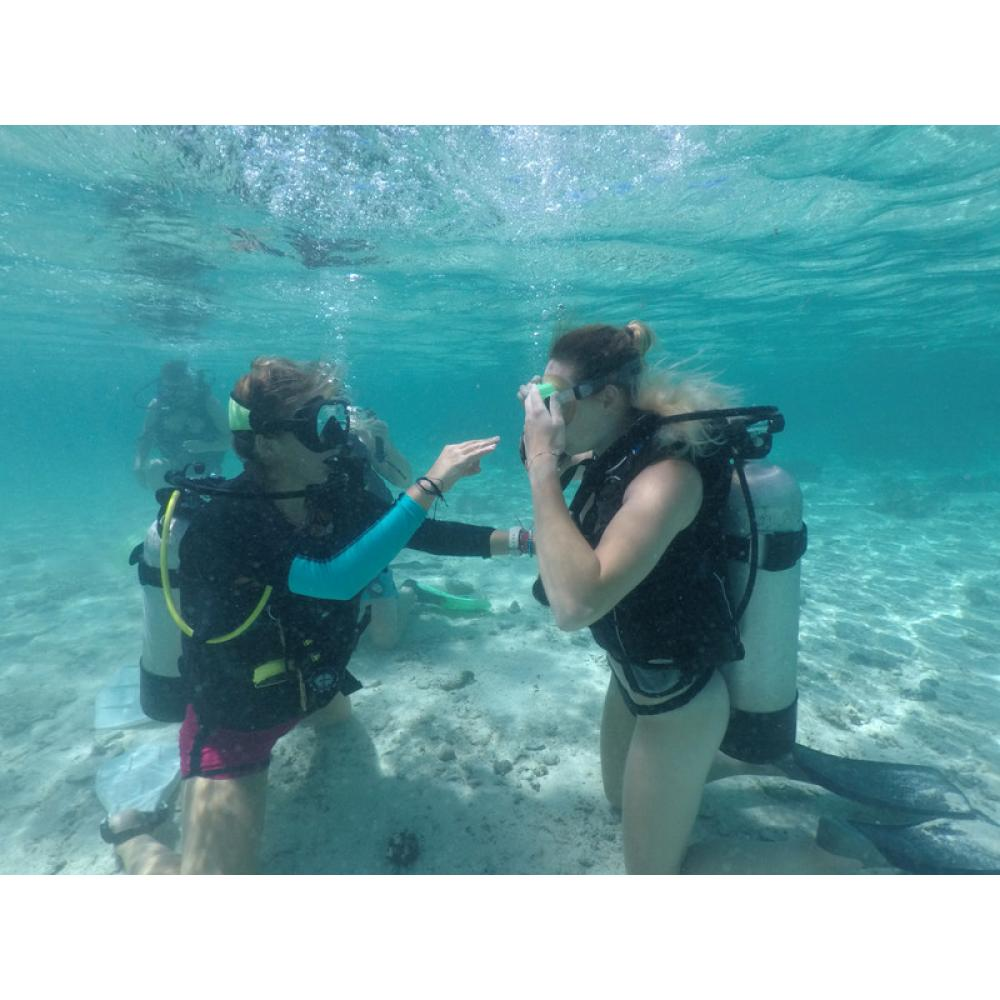 OPEN WATER CERTIFICATION DIVES