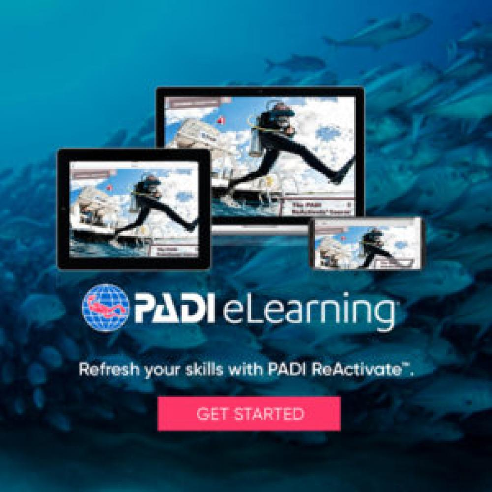 ReActivate eLearning