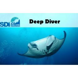 SDI eLearning Code Deep Online