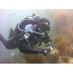 SDI Elearning Dry Suit Online Code