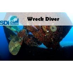 SDI eLearning Code Wreck Online