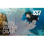 Private Open Water Class