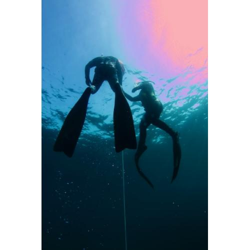 SSI Level 1 Free Diving must purchase Digital Download