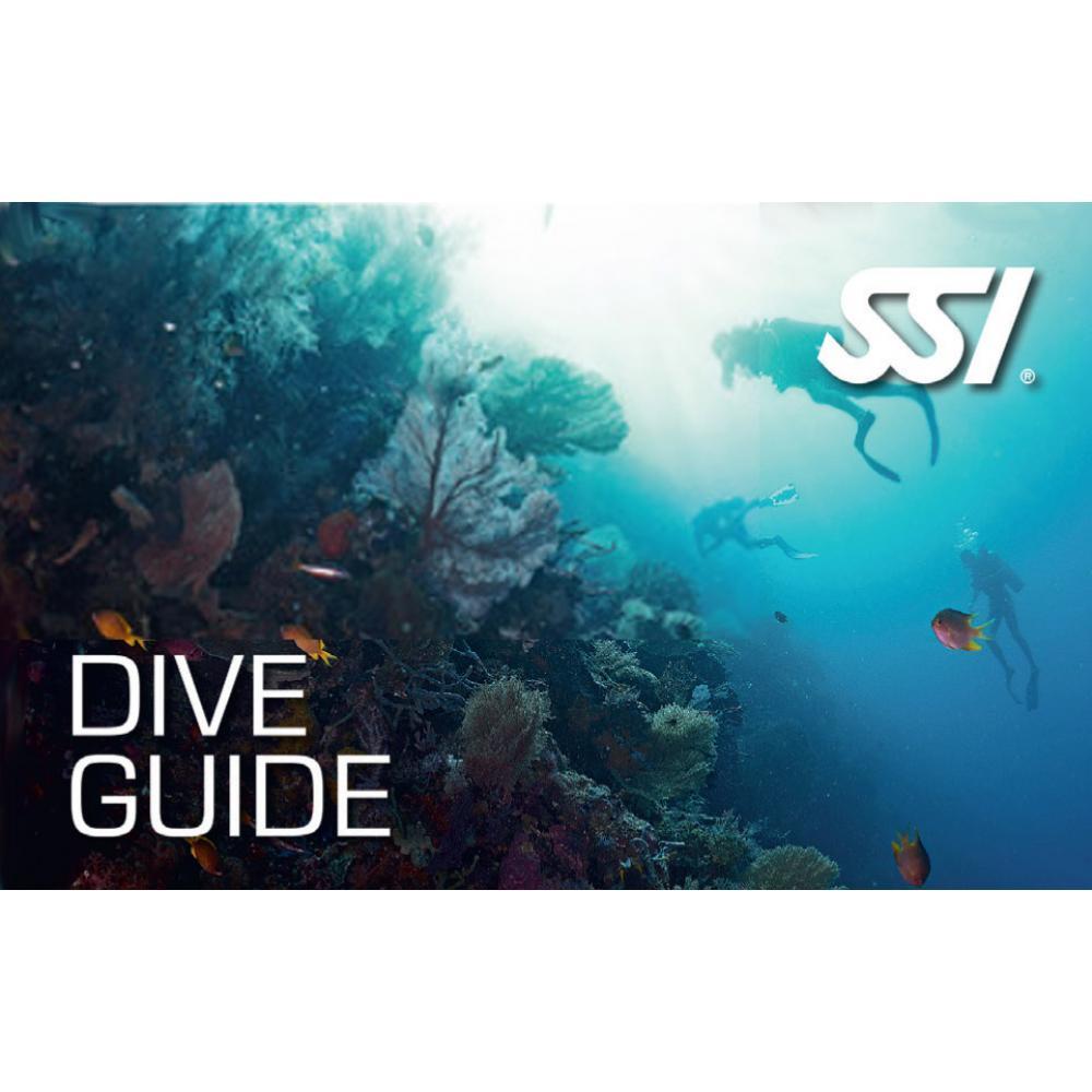 Dive Guide Bundle
