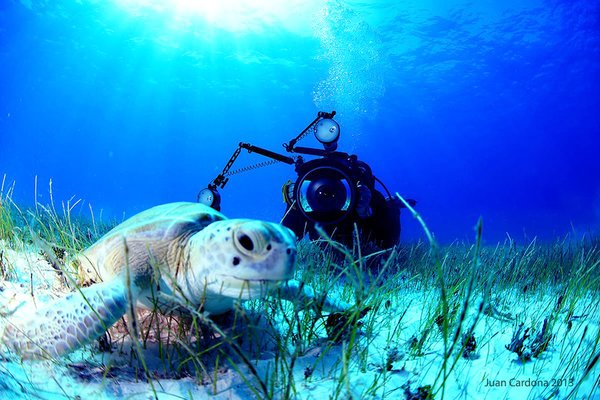 Underwater Photography Diver Course