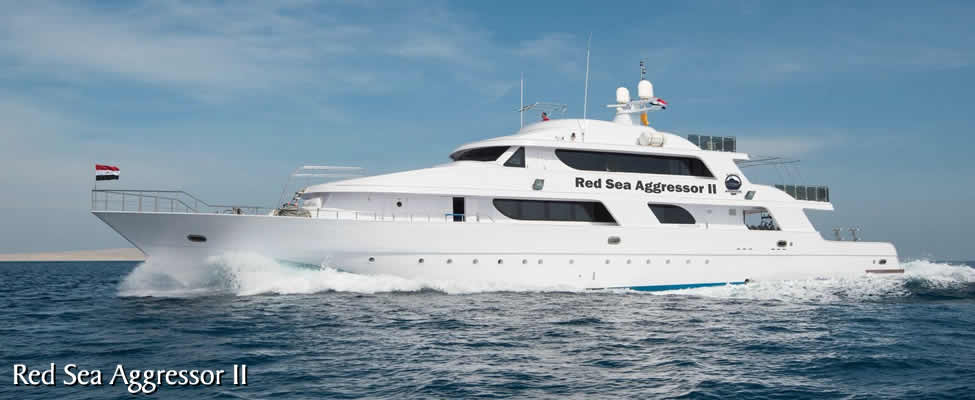 Red Sea Liveaboard 2020
