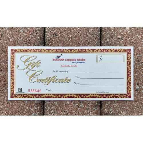 $60 Gift Certificate-20% Bonus
