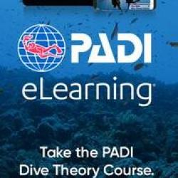 Dive Theory eLearning - Touch (includes PIC)