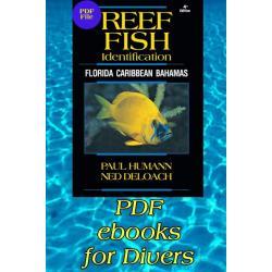 Reef Fish Identification - Various Books