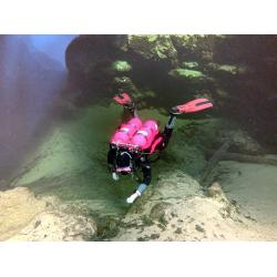 Divemaster Course - Classrom/Pool/OW Inst Fees