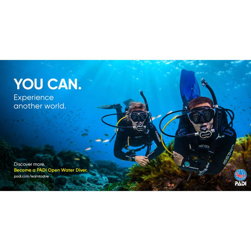 Buddy Special - Full Open Water Course