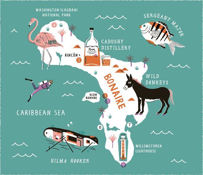 Bonaire: Jan. 8 - 15, 2022