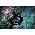 Open Water Scuba Diver Certification