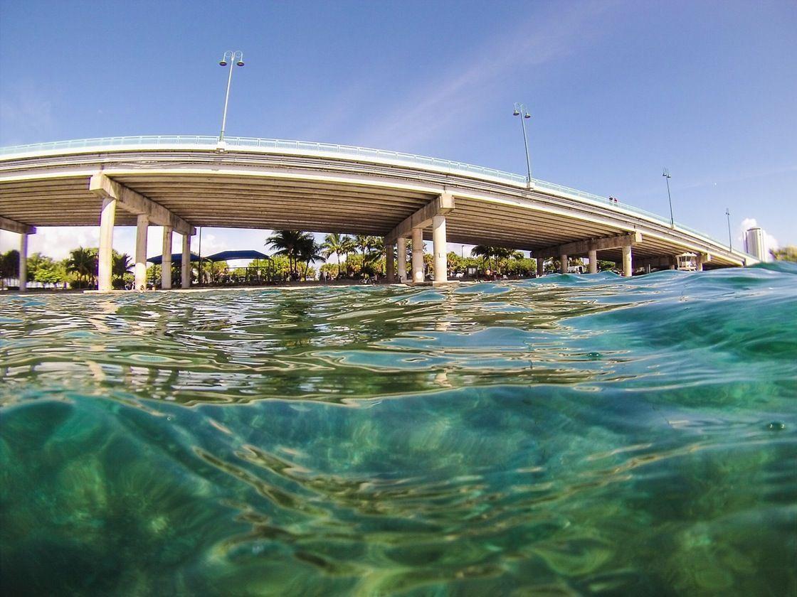 Blue Heron Bridge Beach Dive Feb 13th