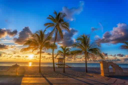 Lauderdale-By-The-Sea Sunrise Dive  Feb 25th