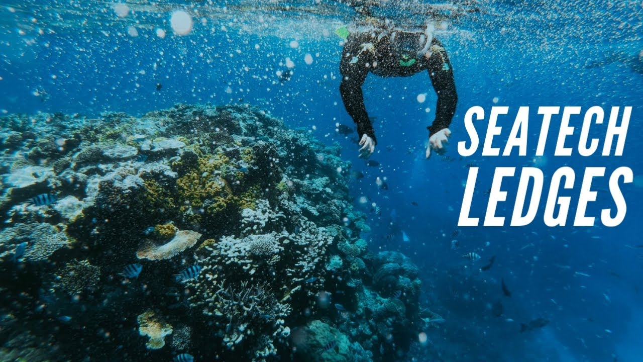 May 20th: SeaTech Ledges Beach Dive