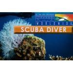 Scuba Diver: Digital NES