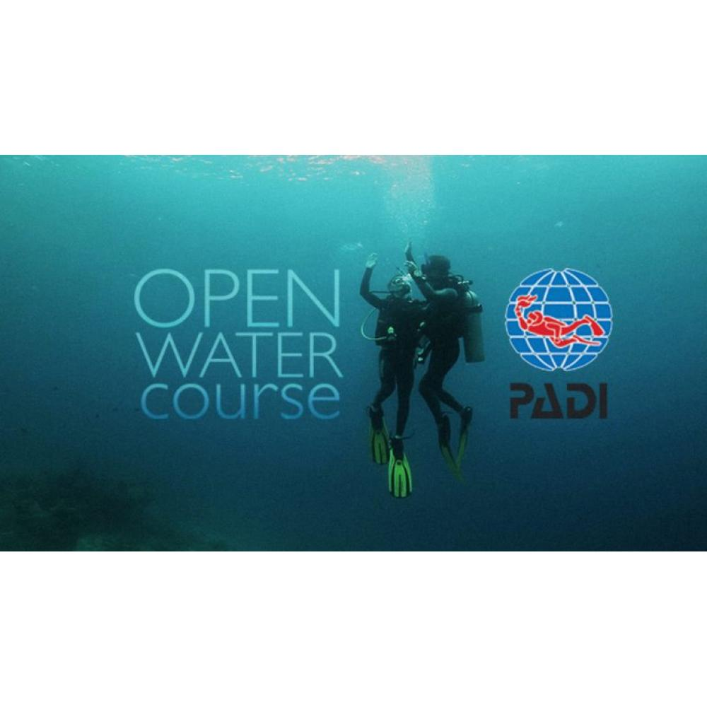 Open Water checkout dives