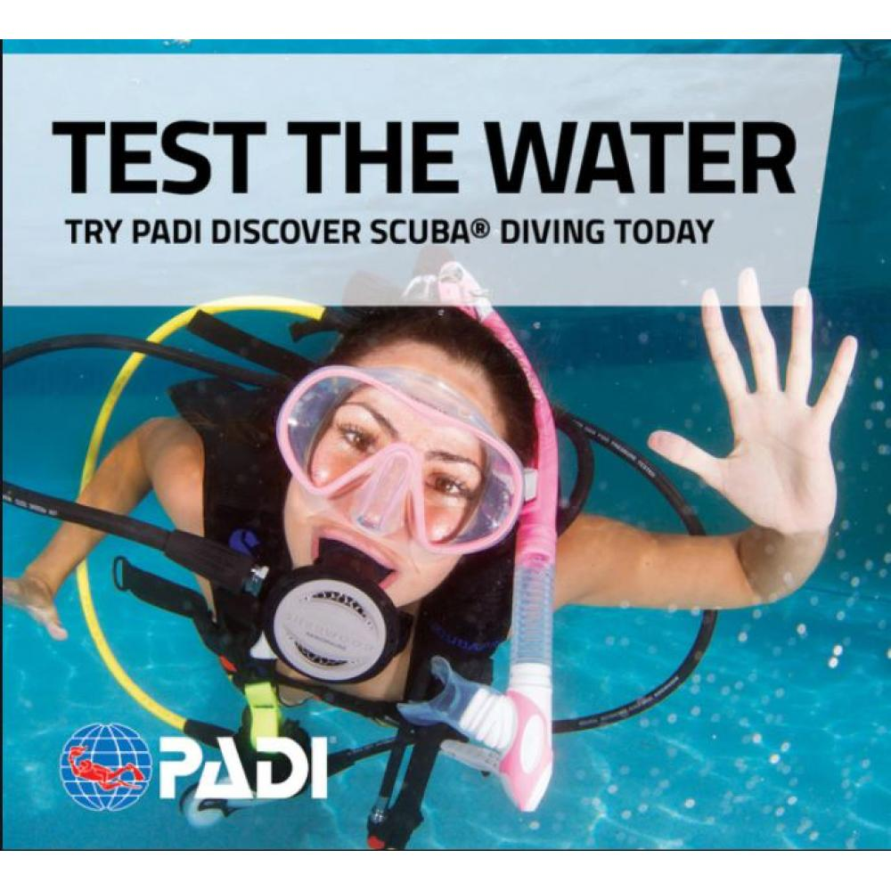 Discover Scuba Diving Gift Certificate
