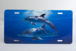 Marine Sports Air Brushed Dolphins Plate