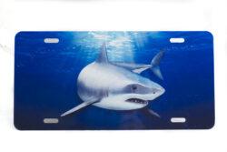 Marine Sports Air Brush Shark Plate