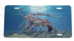 Marine Sports Air Brush Lobster Plate Blue