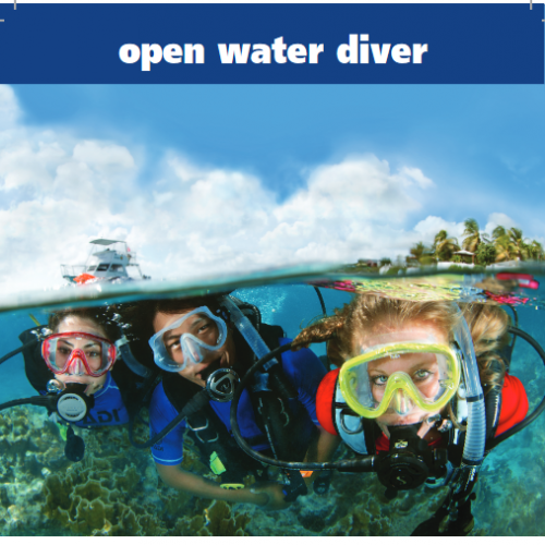 Open Water Diver eLearning (includes Processing fee)