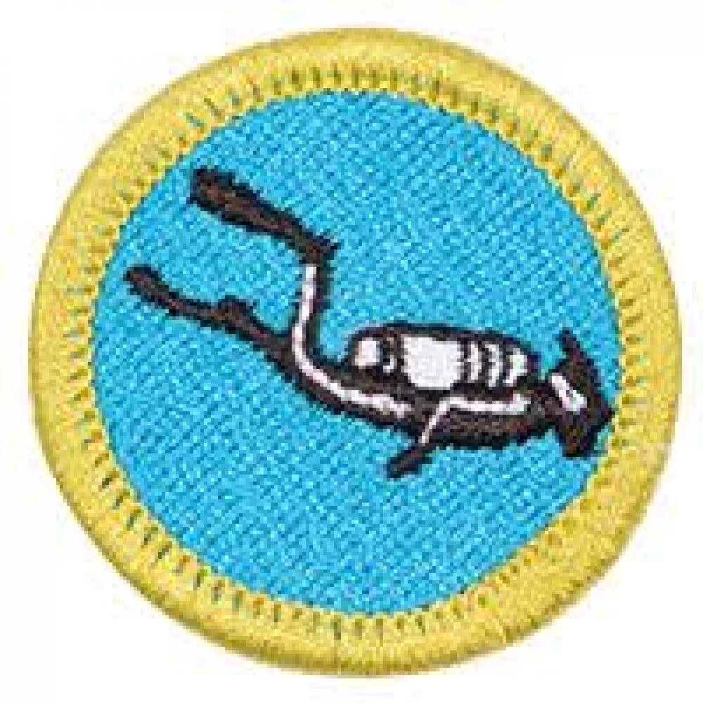 Scout Me In- Basic