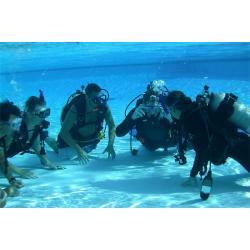 SDI inactive diver
