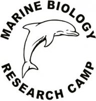 Marine Biology Research Camp
