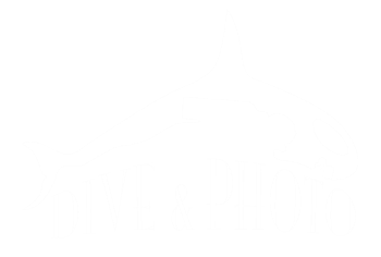 DIVE AND PHOTO LLC