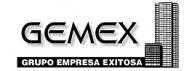 Grupo Empresa Exitosa