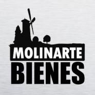 C4 Molinarte Producciones, C.A.