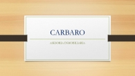 CARBARO. S.A.