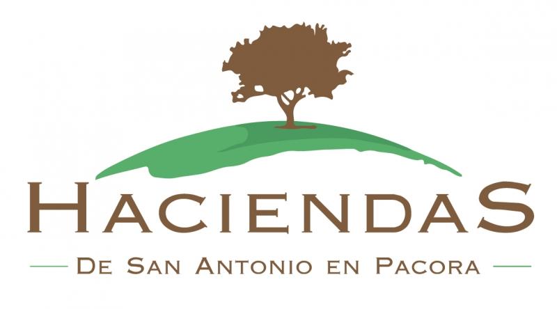 HACIENDAS DE SAN ANTONIO EN PACORA
