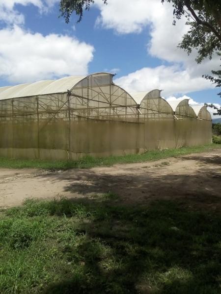 Chivacoa - Haciendas y Fincas