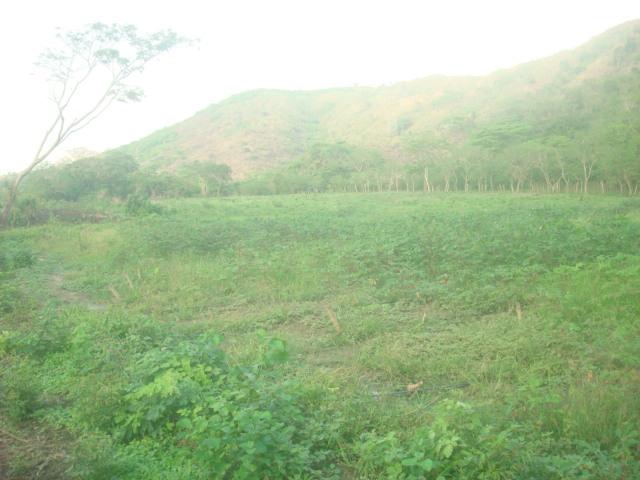 Chivacoa - Terrenos y Parcelas