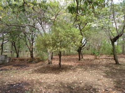 Se vende lindo terreno en Cantón El Amate, San Miguel