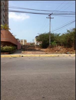 TERRENO (Calle donde esta el Seniat, Atlantico y Oleos, Banesco)