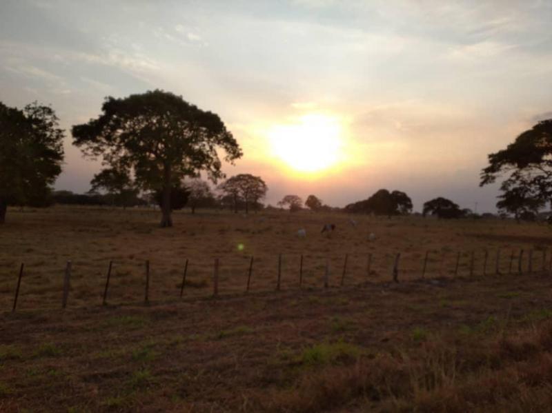 San Carlos - Terrenos y Parcelas