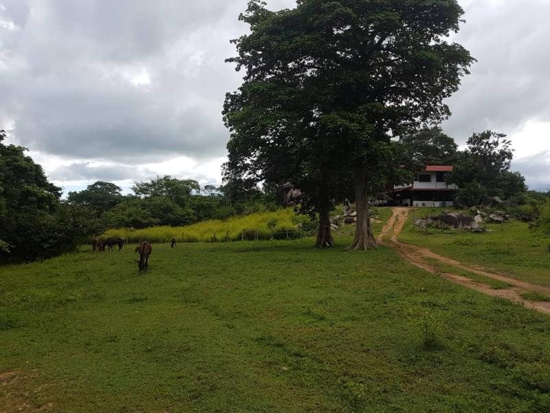 San Carlos - Haciendas y Fincas