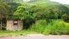 Caripe - Terrenos y Parcelas