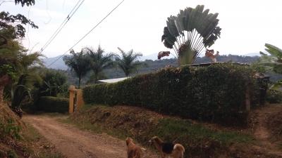 La Cabaña Arbeláez